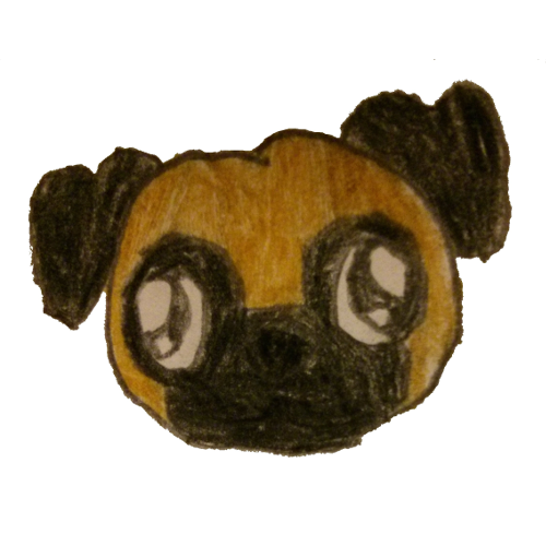 A simple drawing of a pug face using colored pencils.