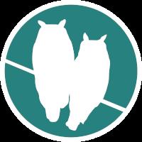 Morning Owls Logo