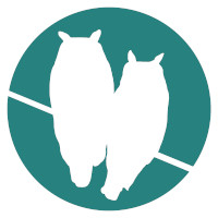 Morning Owls Logo